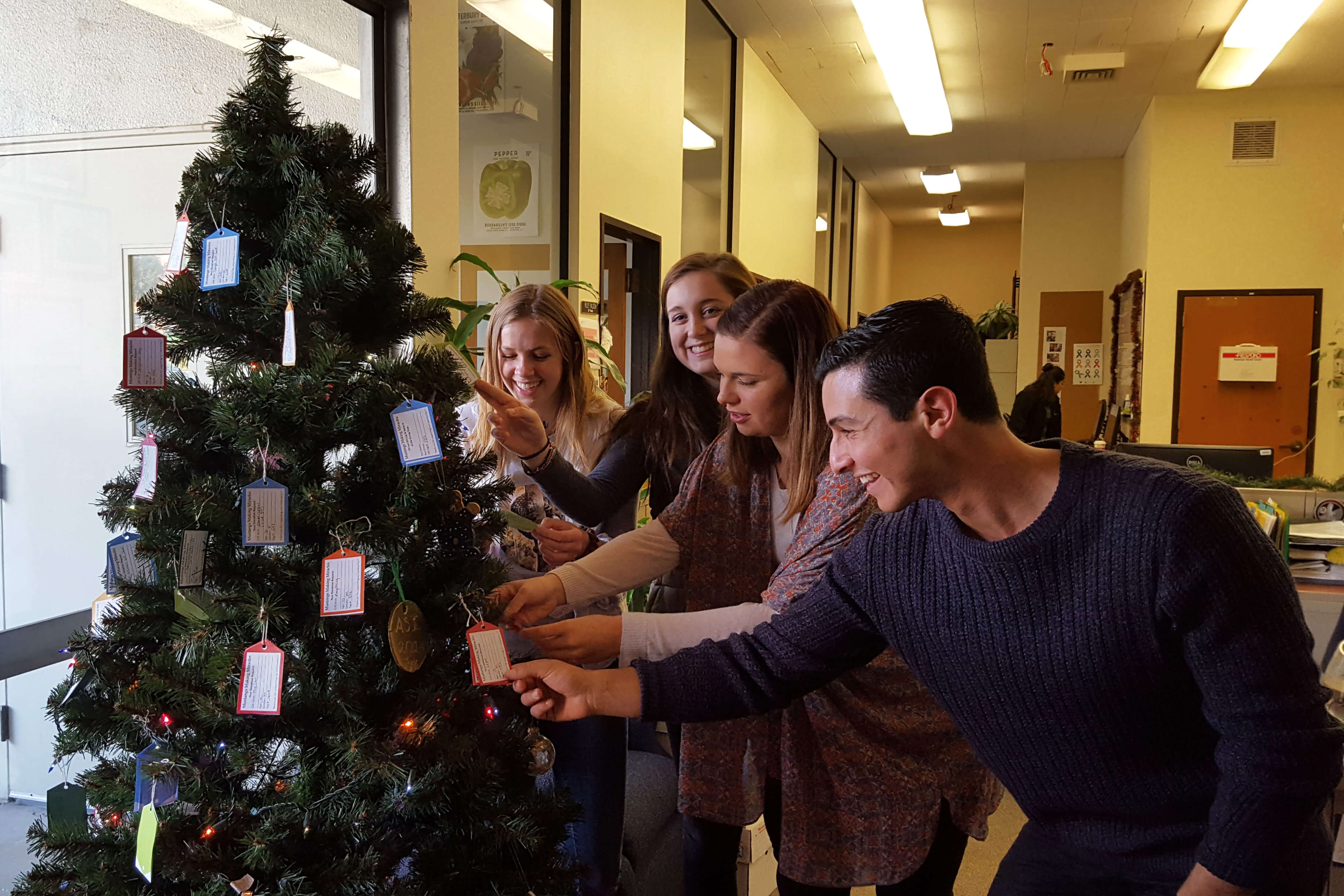 Student Government members look at tags on the giving tree