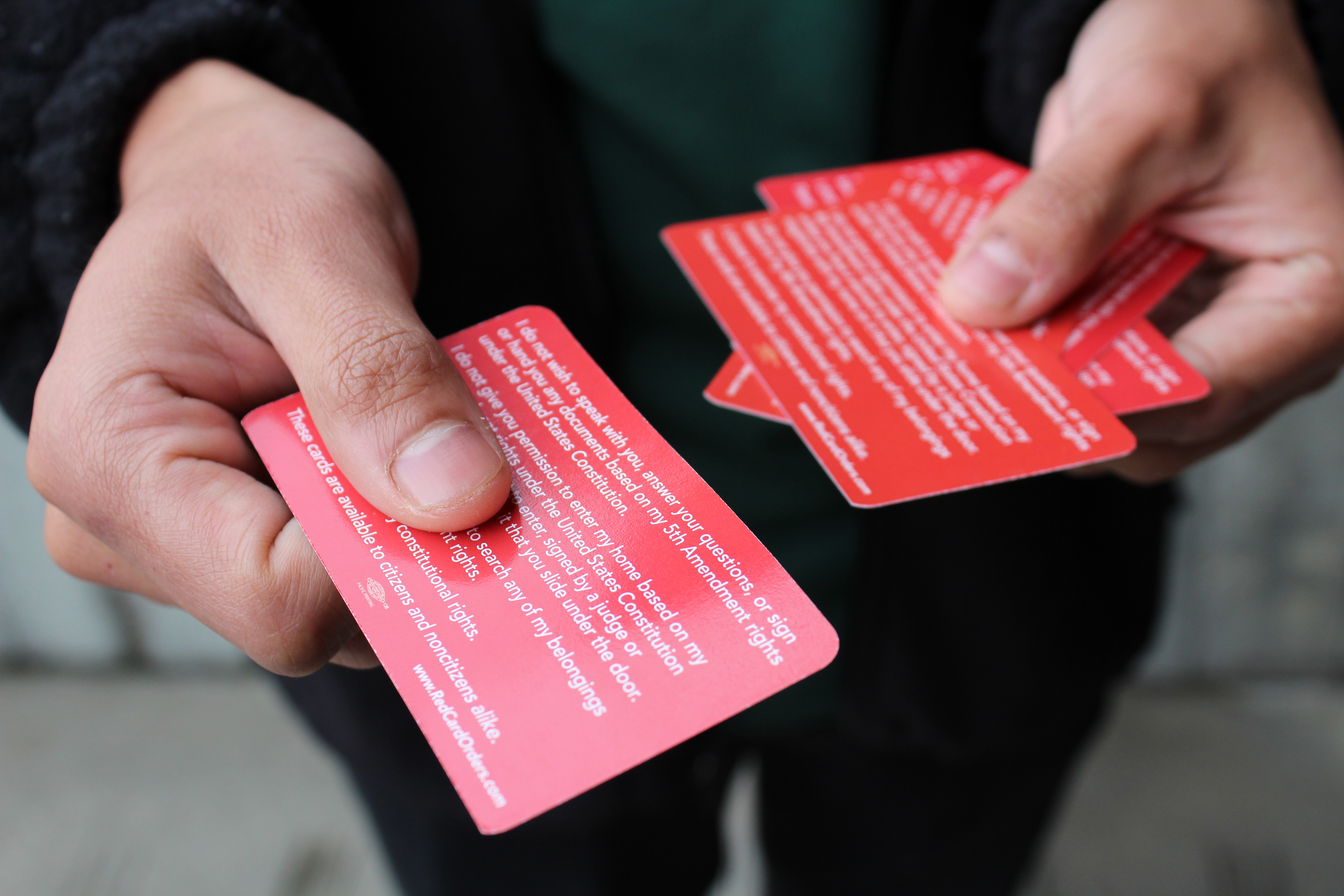 Close up of hands holding multiple red cards